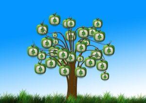 taxas nominais e efetivas